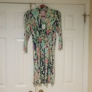 NWT Lilly Pulitzer Alexandra Dress Southern charm